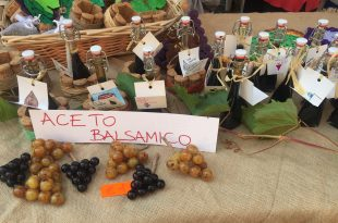 Best balsamic vinegars in Nonantola
