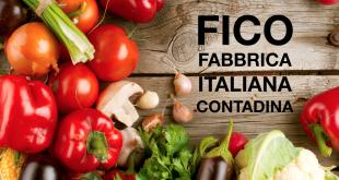 Traditional Balsamic Vinegar of Modena in FICO