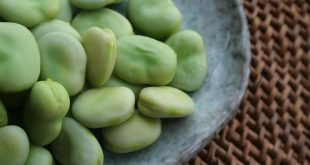 Fava beans salad with Traditional Balsamic Vinegar