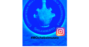 Museum of Traditional Balsamic and Instagram